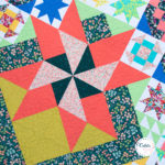 A Quilt, A Sew Along & A Giveaway